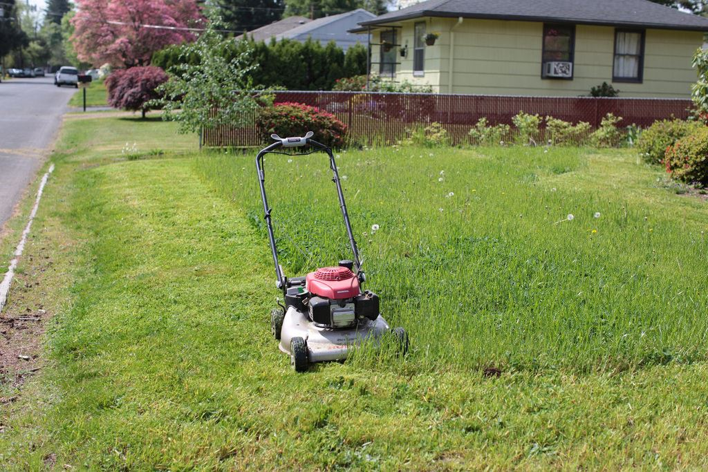 Lawnmower in front yard